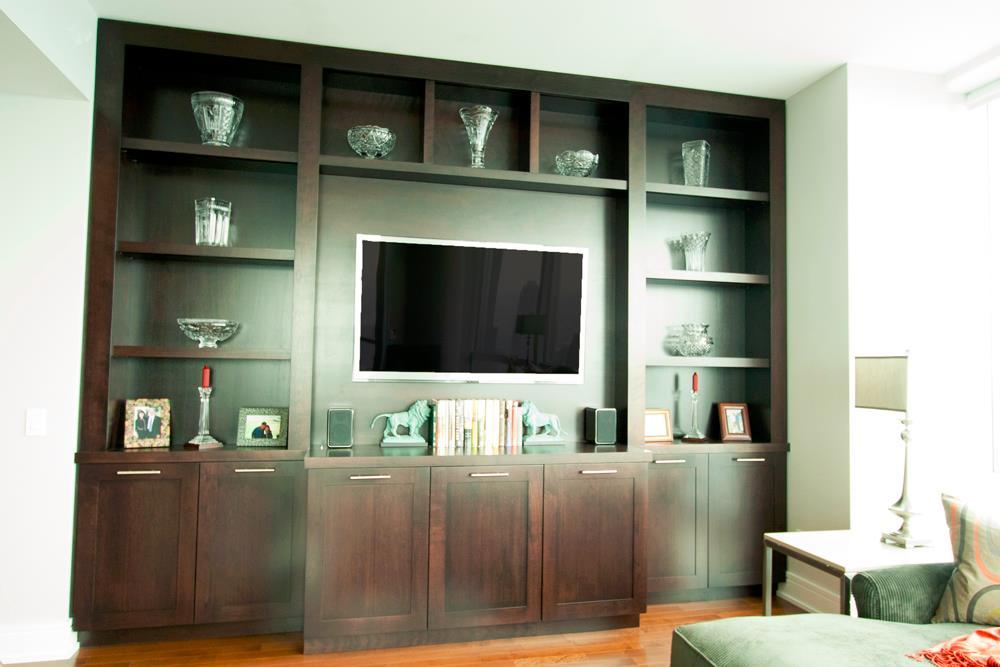 Custom Cabinets Living Room