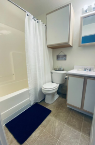 chicago bathroom design